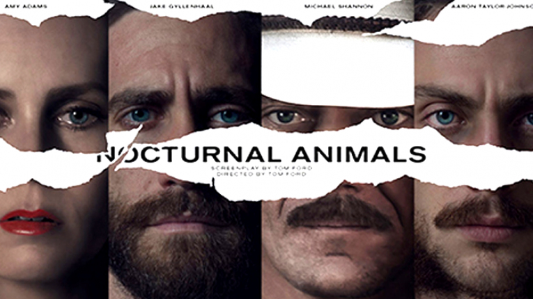 nocturnal animals.png