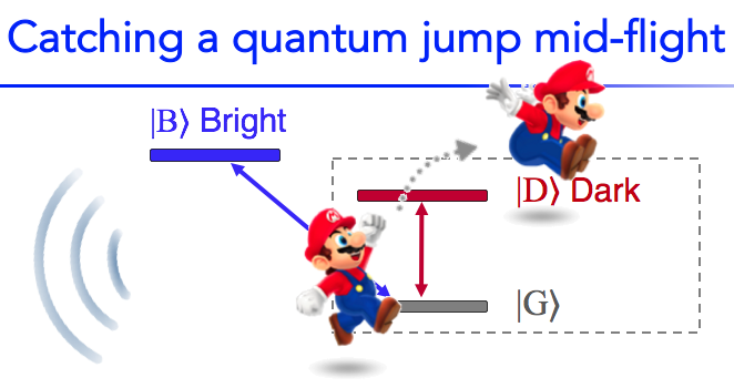 To catch and reverse a quantum jump mid-flight — Zlatko