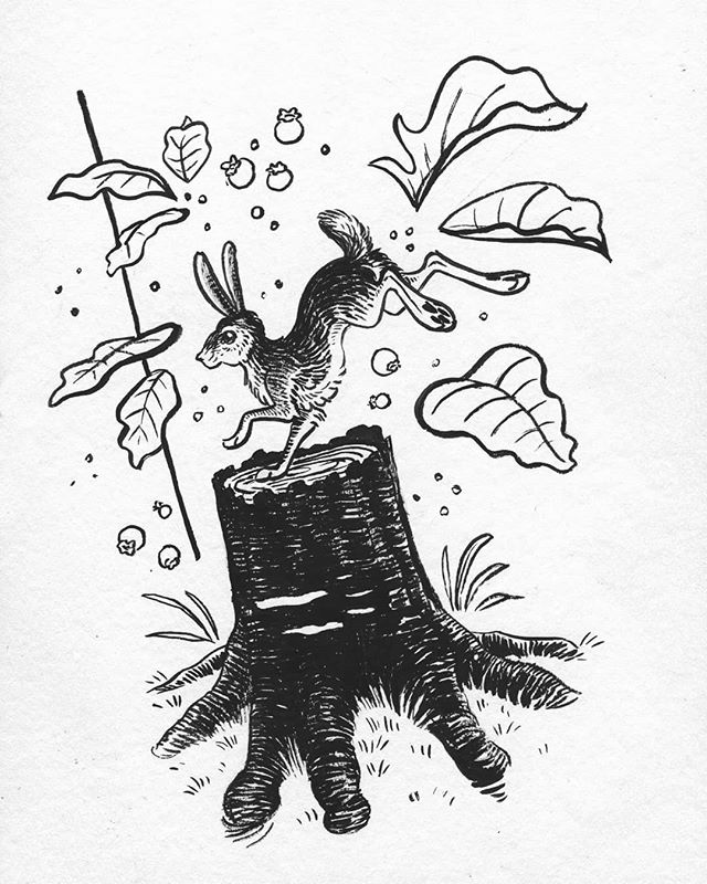 Day 8, berry hunting! Behind, but determined to continue inking. 🐰  #inktober2019#inktober#brush#ink#inkart#art#artist#artistoninstagram#instaart#animalart#animalartist#rabbit#nature#natureart#illustration
