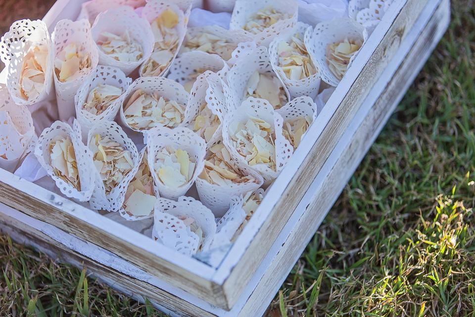 Rose petal confetti cones.jpg