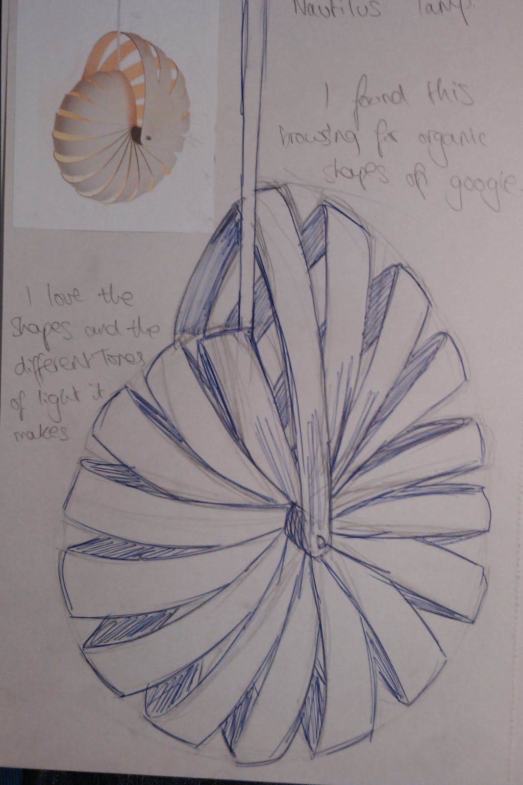 Sketches - This student did a drawing of their finished sculpture.  This practice helps your observational drawing skills.