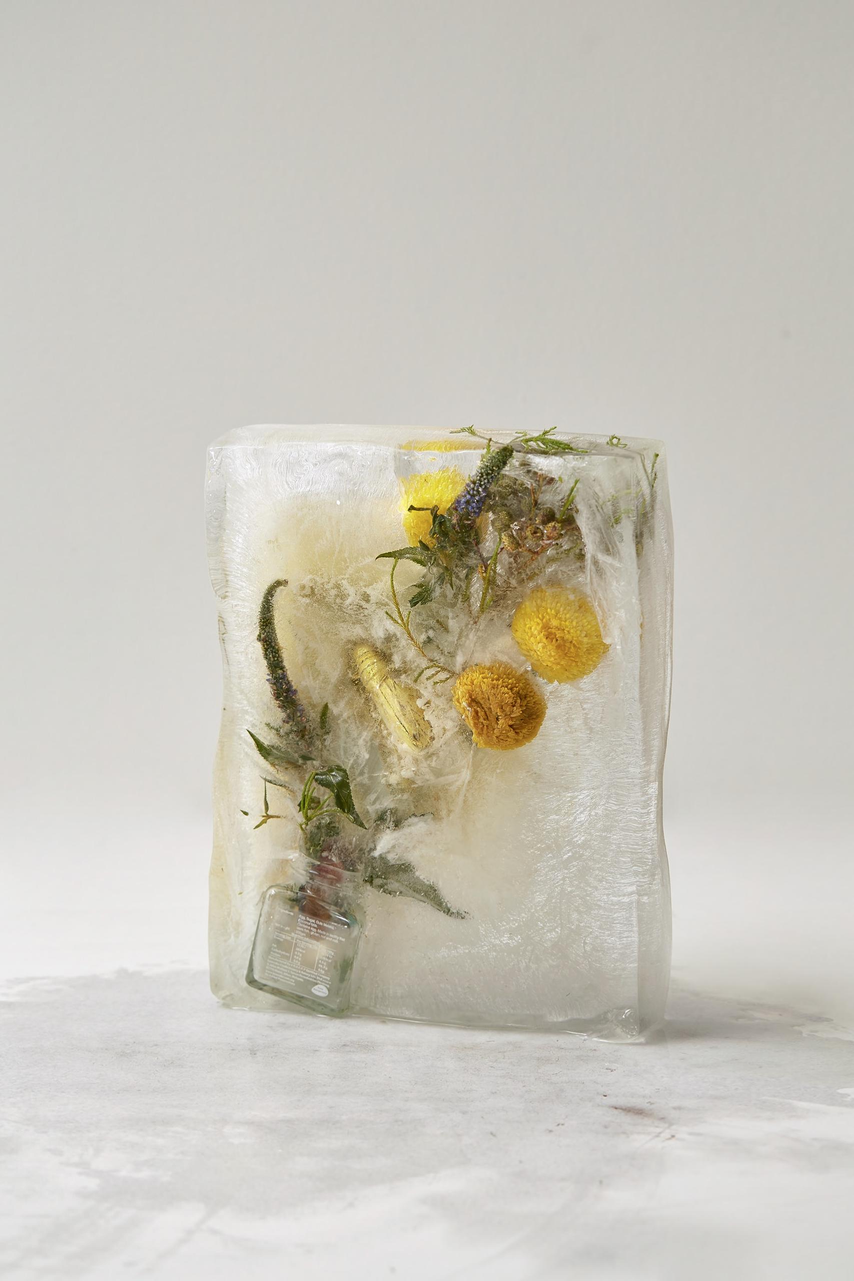 ice4.jpg