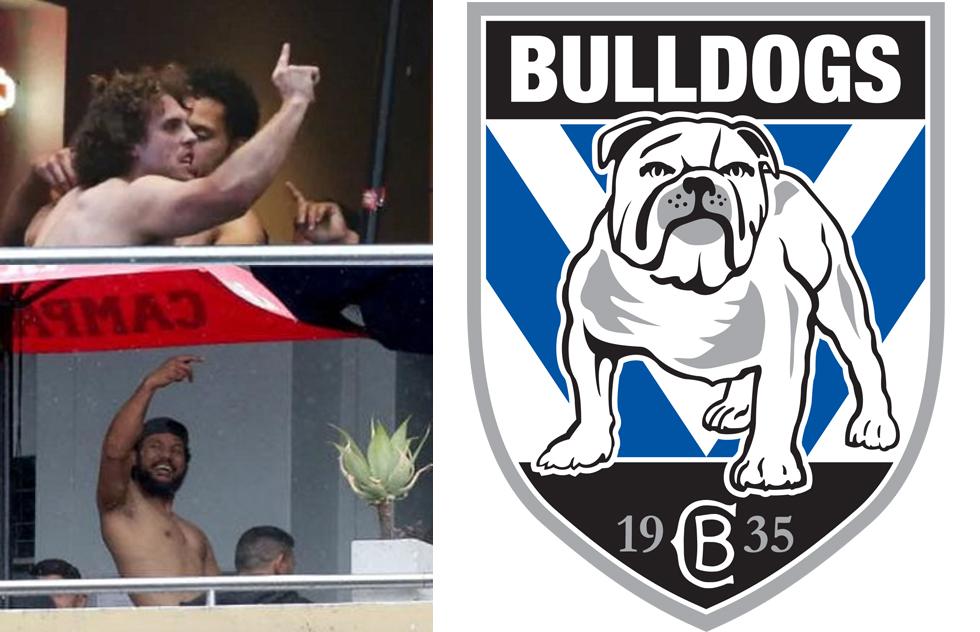 bulldogs mad monday.jpg