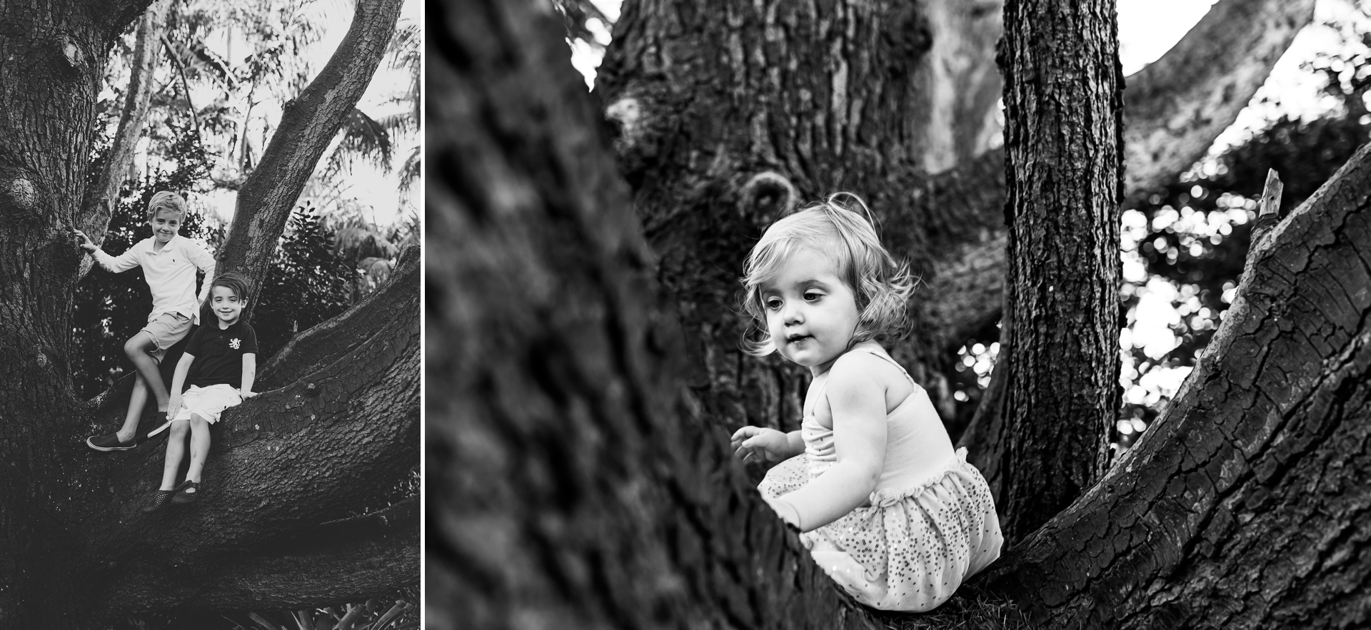Sydney North Shore Outdoor Family Sunset Session