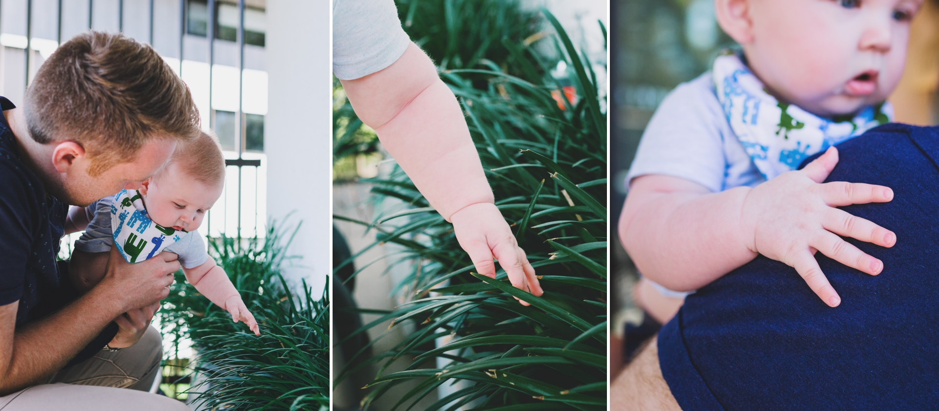 6 month old baby photography session