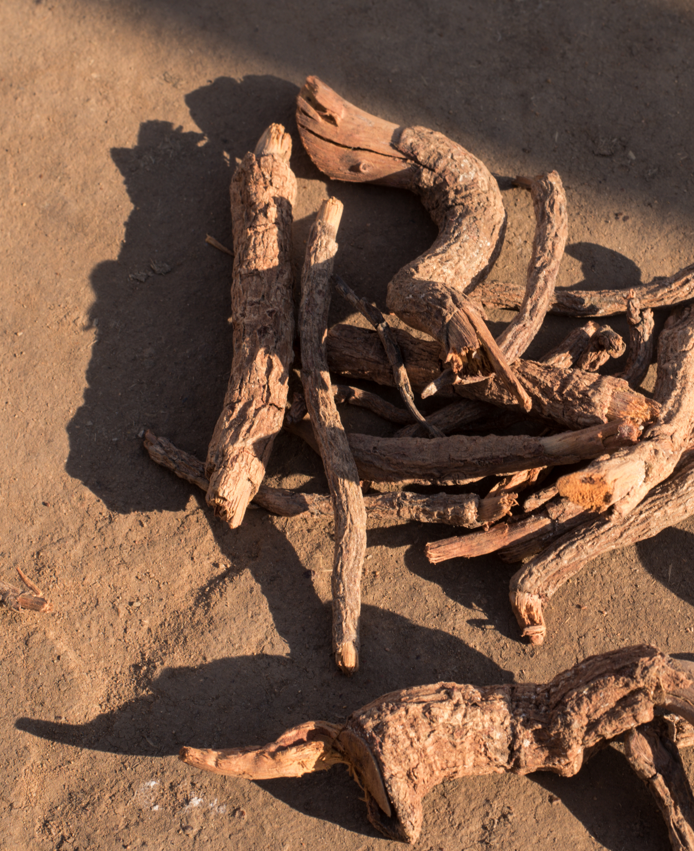 Dried Madder (Aal) roots