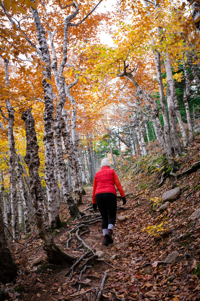 A hidden valley emerges with panoramic views - Hiking in Cape Breton is such a luxury. We have these awe inspiring landscapes that have been shaped by time, and trails that take you beyond your wildest imaginations.