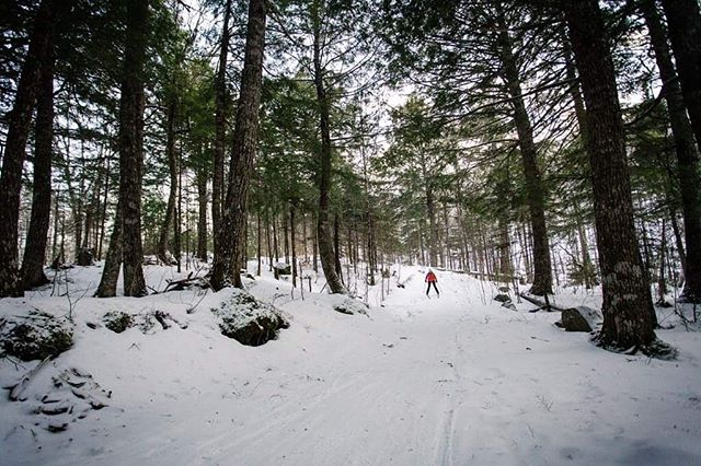 'Ski Tuonela' is such an epic getaway. Here is Cecilia zipping down a hill in between some beautiful hemlock trees. Can't wait to get back there and have a relaxing cross country ski getaway with a cabin in the woods. Stoked about winter❄️⛷😊 . . . . . . #explorecbwinter  #winterfun  #xcskiing  @visitcapebretonisland  @visitnovascotia