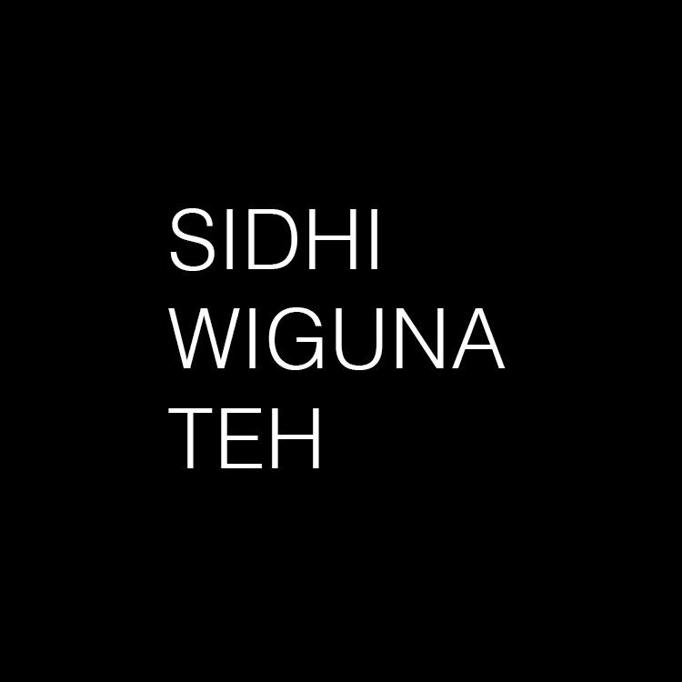 FENG SHUI CONSULTANT  SIDHI WIGUNA TEH