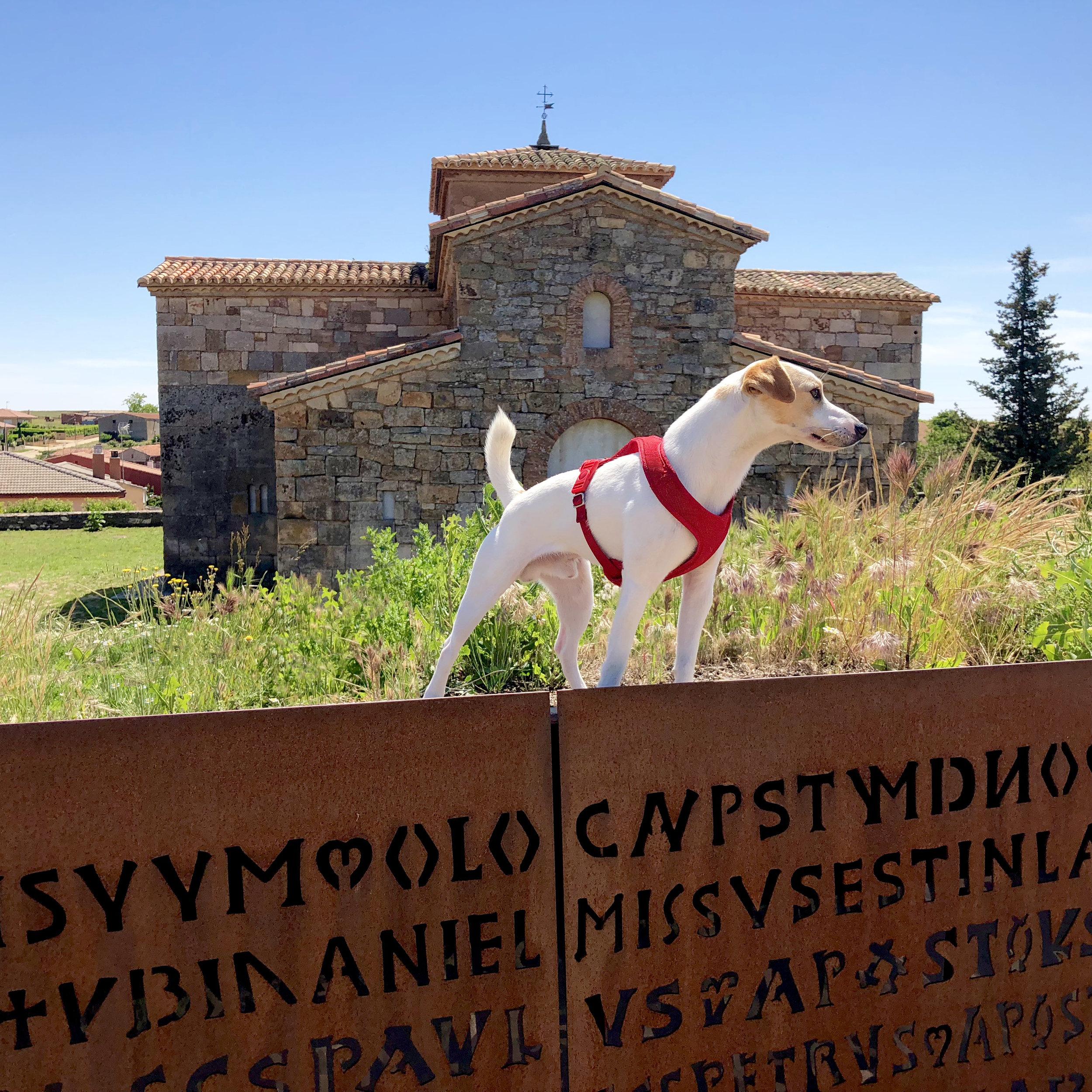 San Pedro de la Nave.