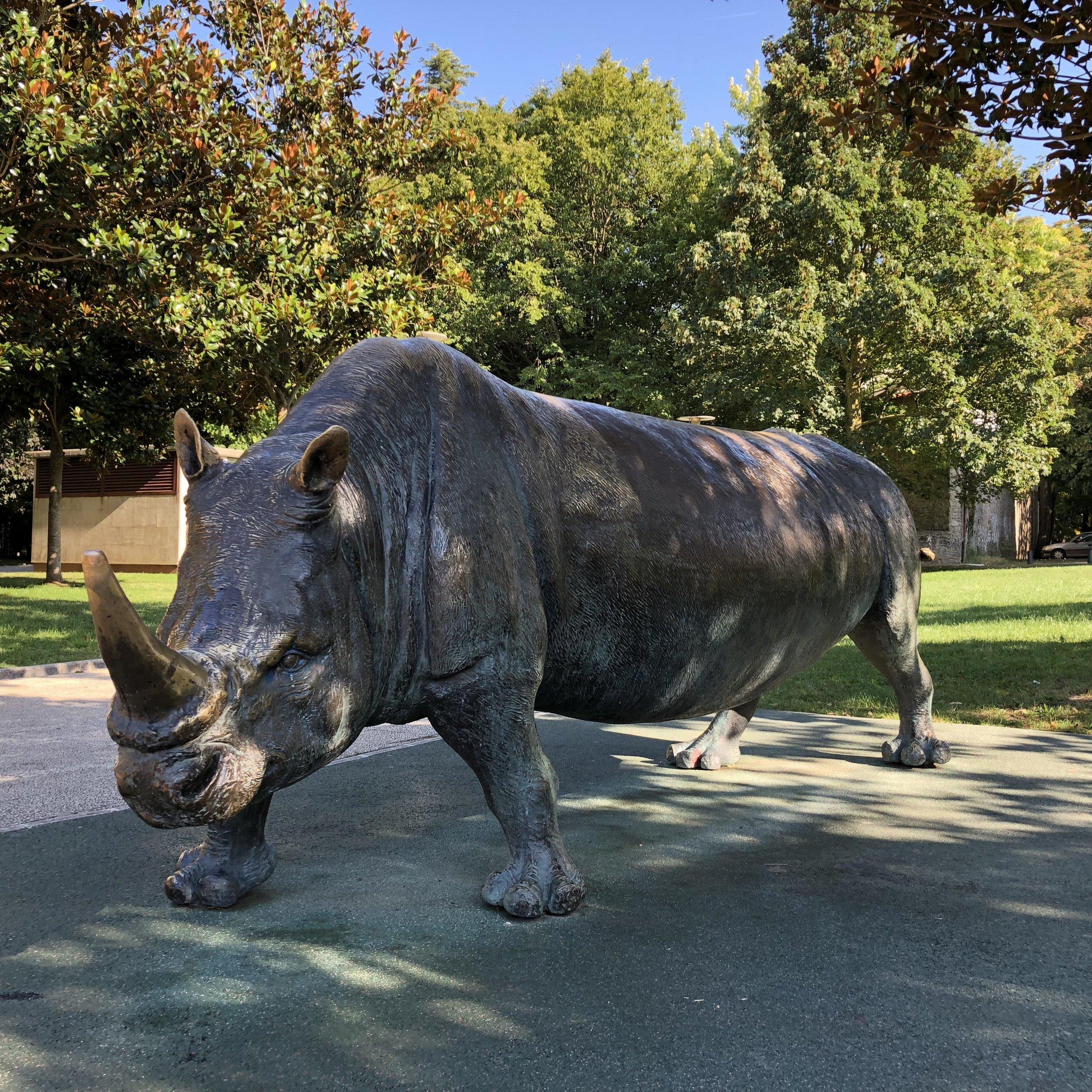 Rinoceronte junto a la catedral.