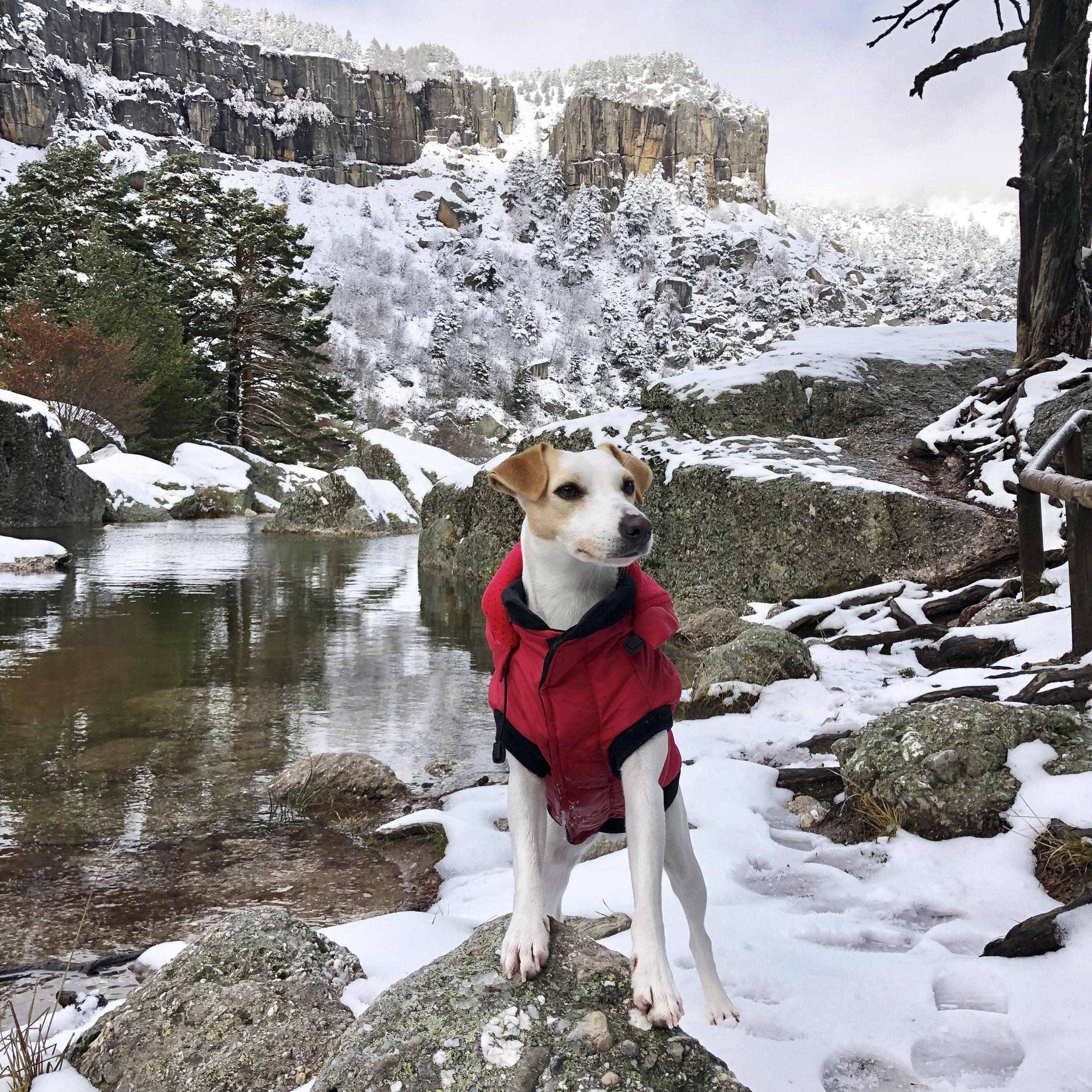 Ya es invierno en La Laguna Negra.