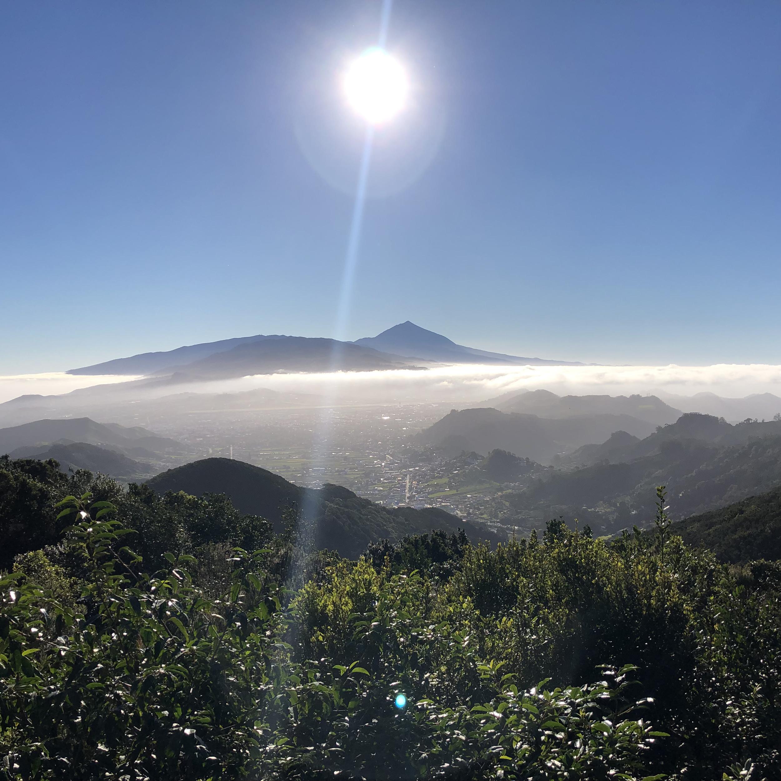 El Teide visto desde el parque de Anaga.