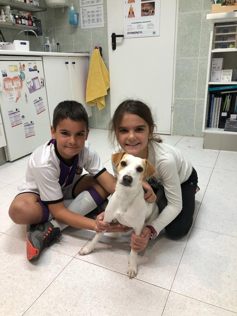 Con Luis y Amaia en el Centro Veterinario API de Tres Cantos.