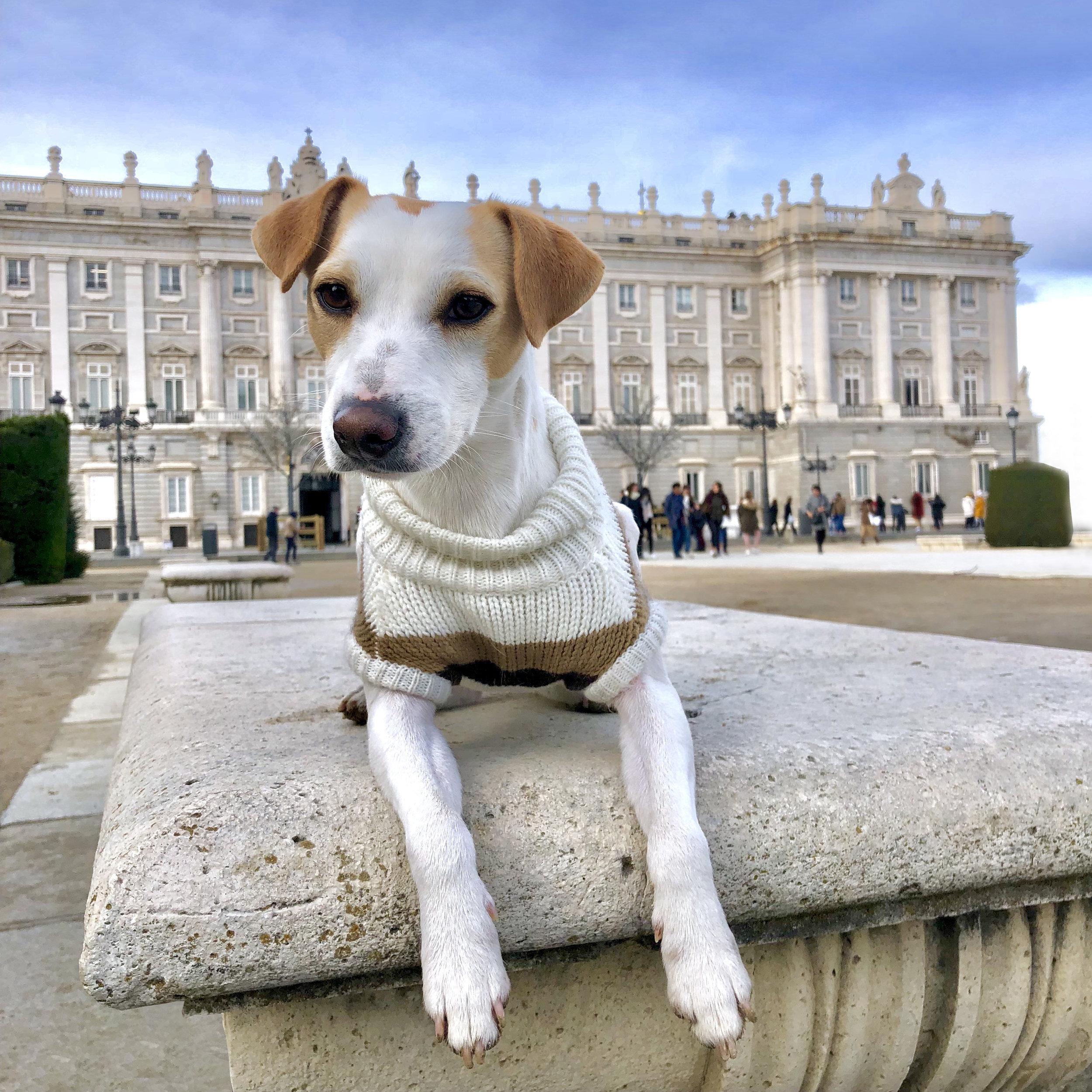 Junto al Palacio Real.