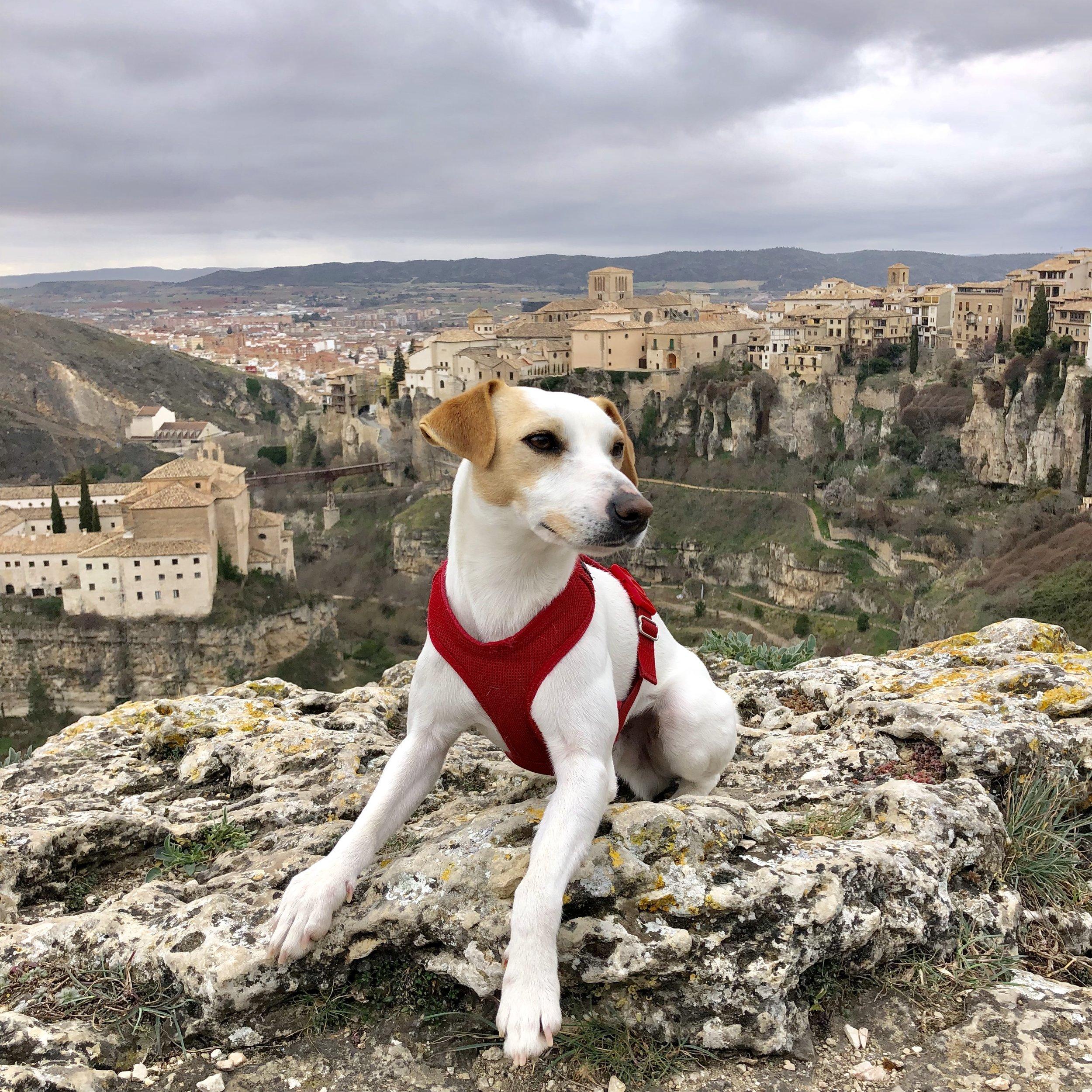 Vistas de Cuenca desde el castillo.