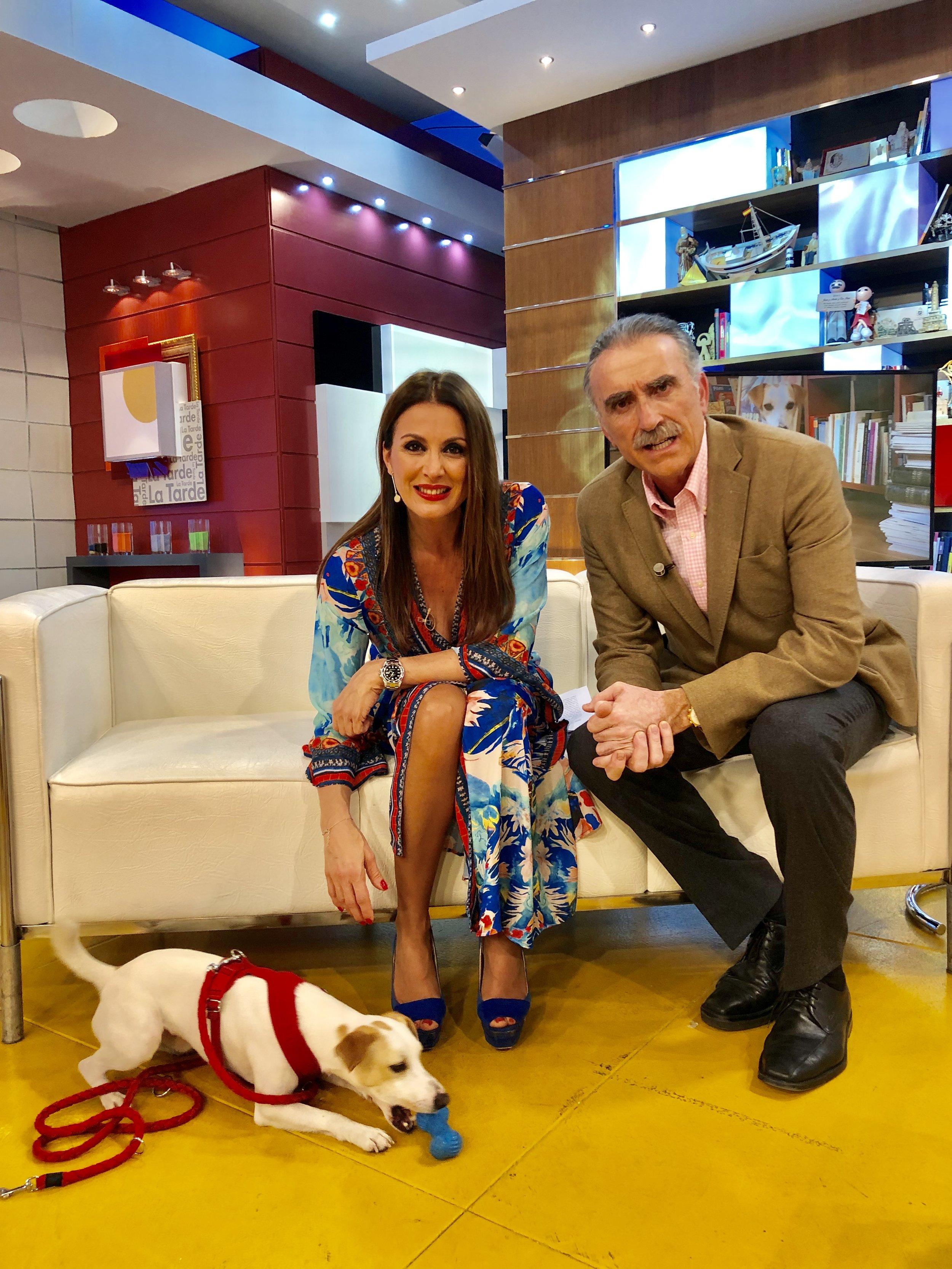 Con Eva y Juan en La Tarde de Canal Sur.