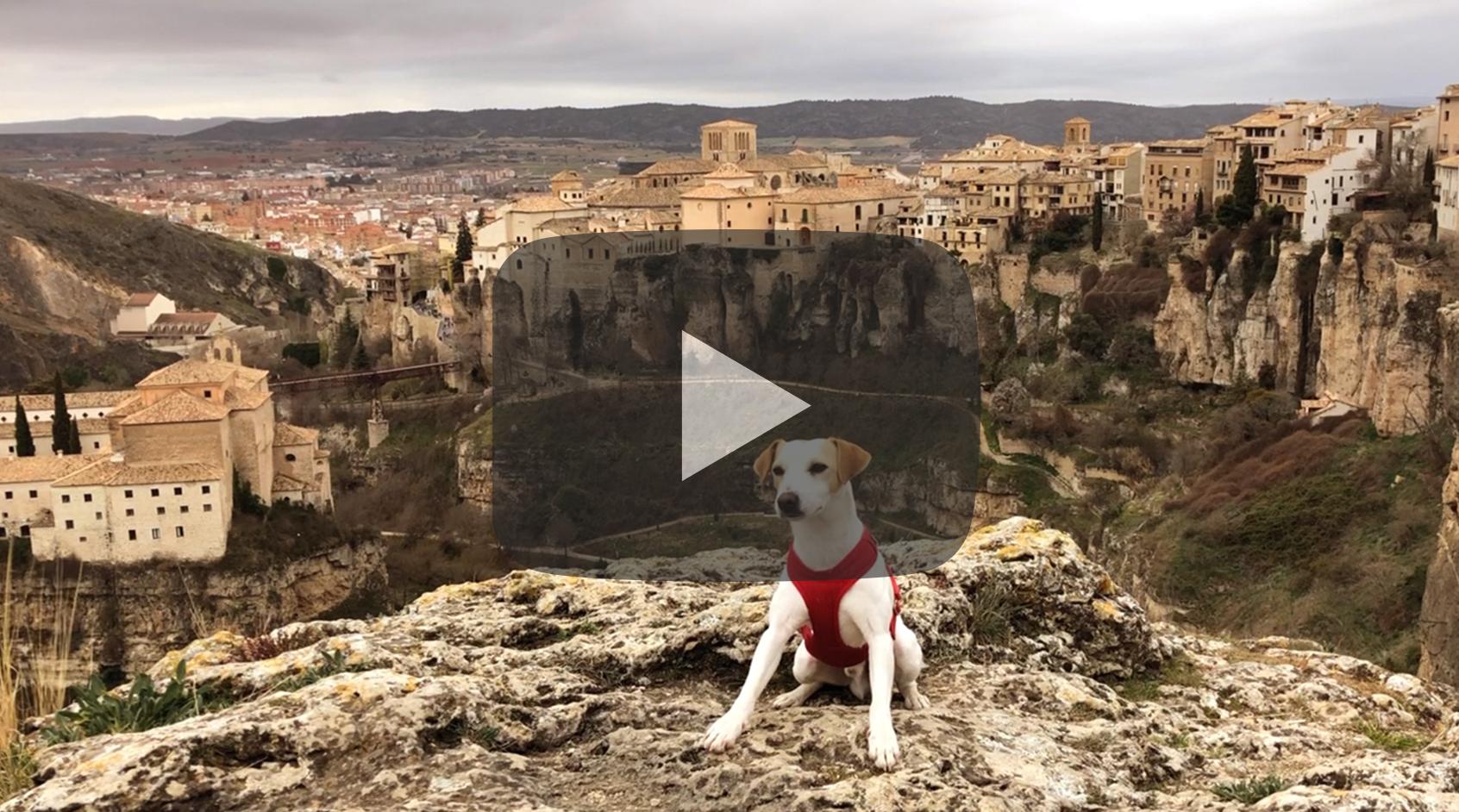 Pipper en Cuenca