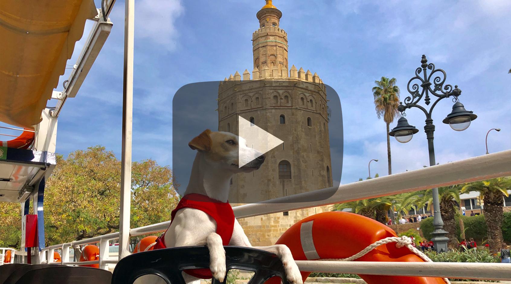 Pipper en Sevilla.