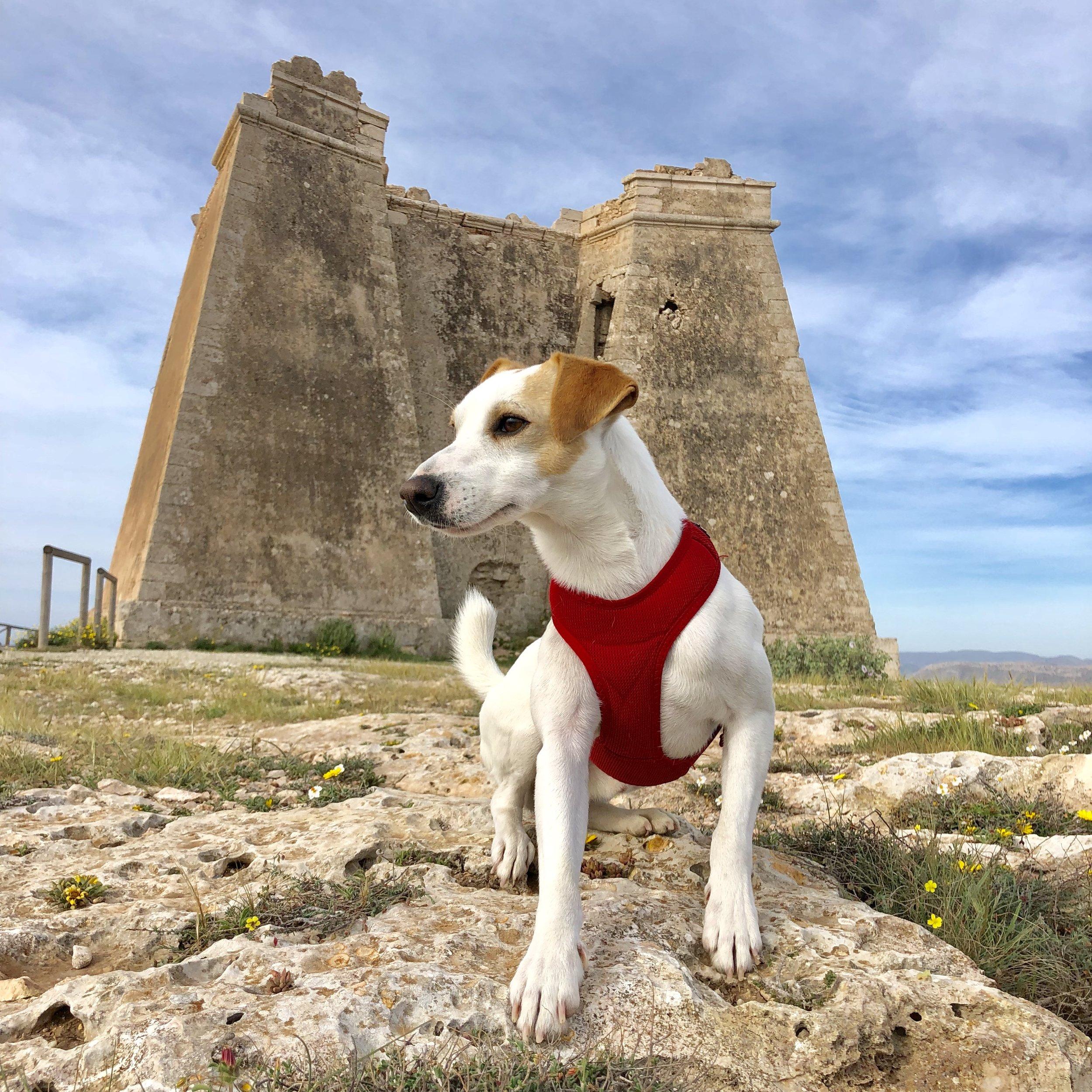 Pipper en la Torre Roldán, escenario de la serie Juego de Tronos.
