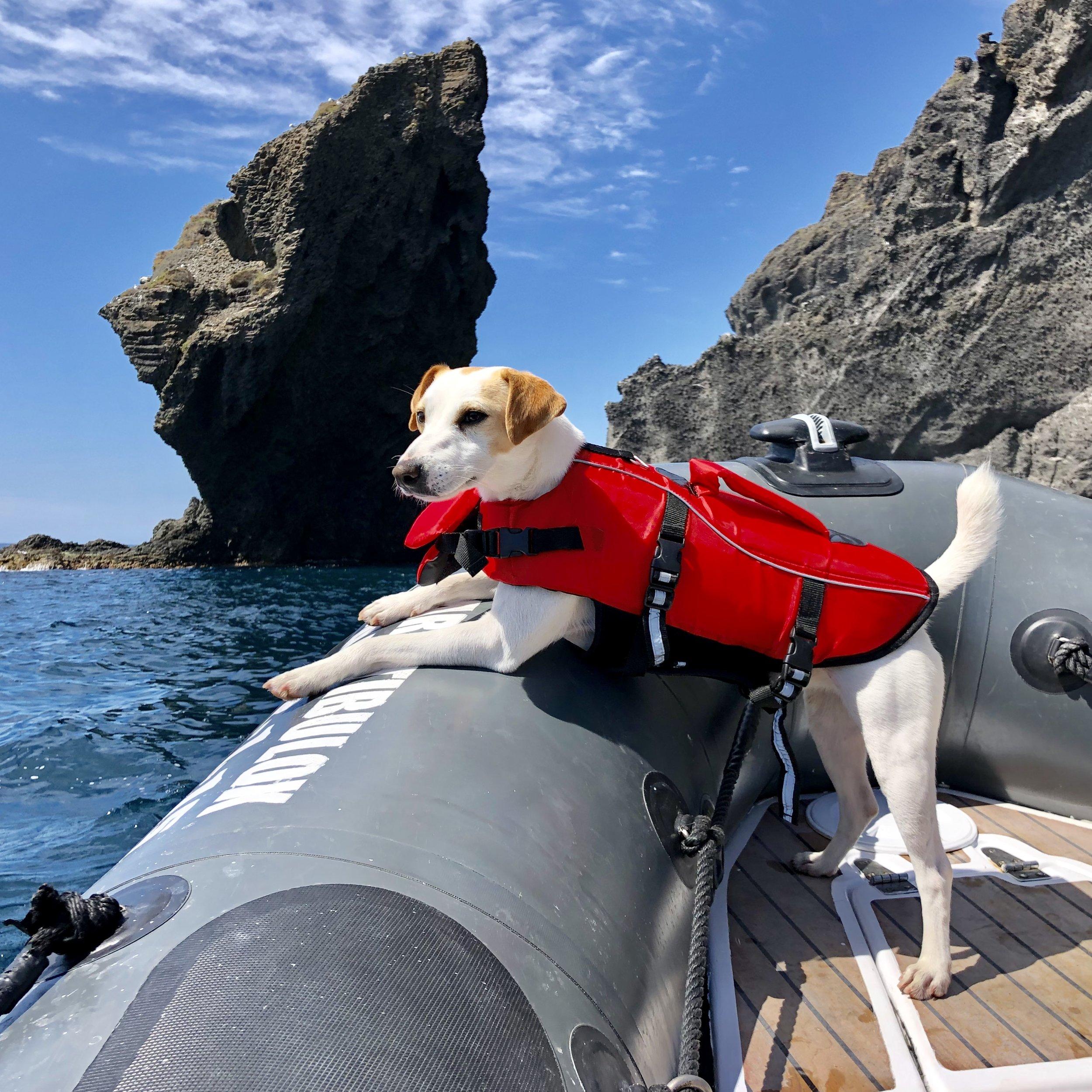 Pipper navegando por el Cabo de Gata.
