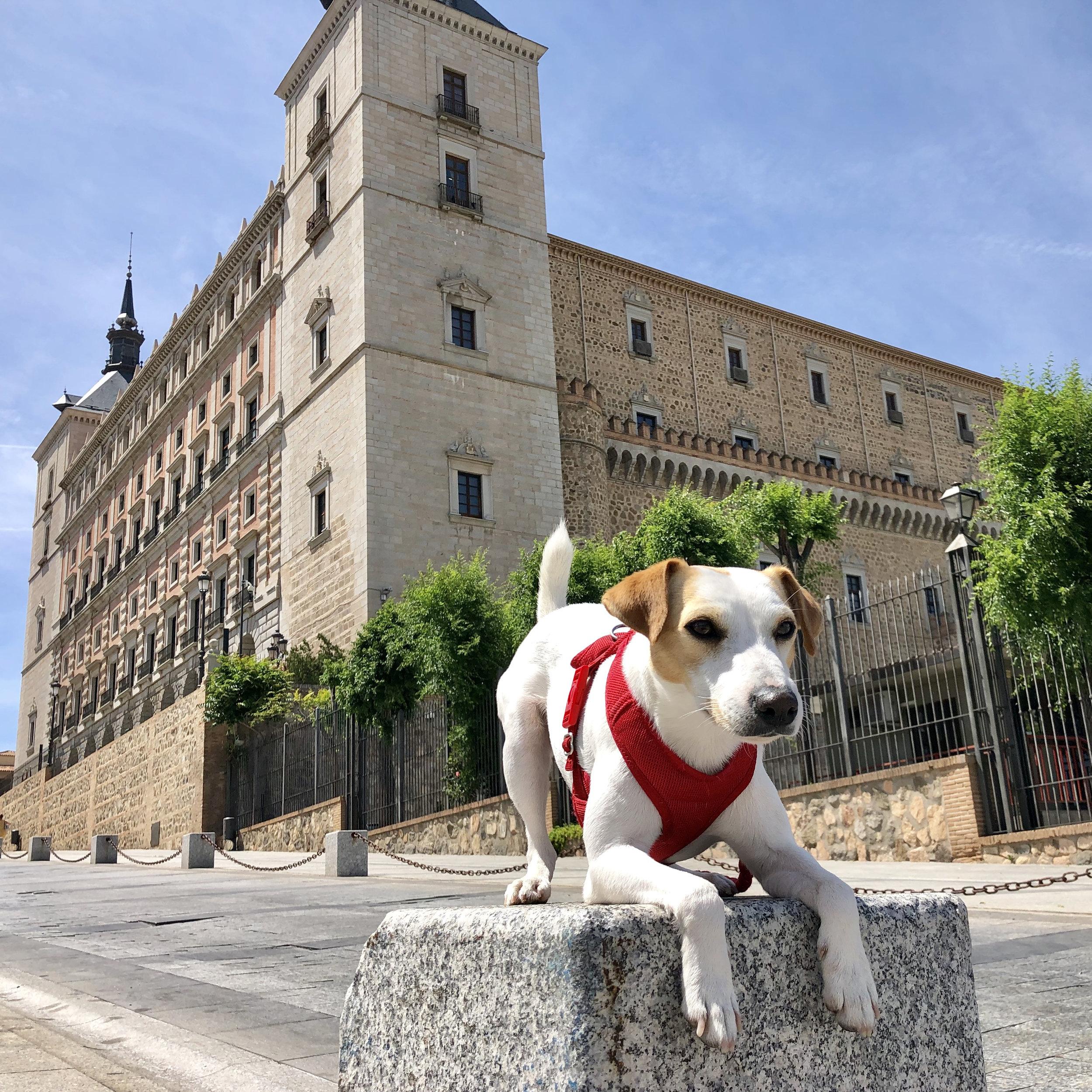 Pipper frente al Alcázar de Toledo.