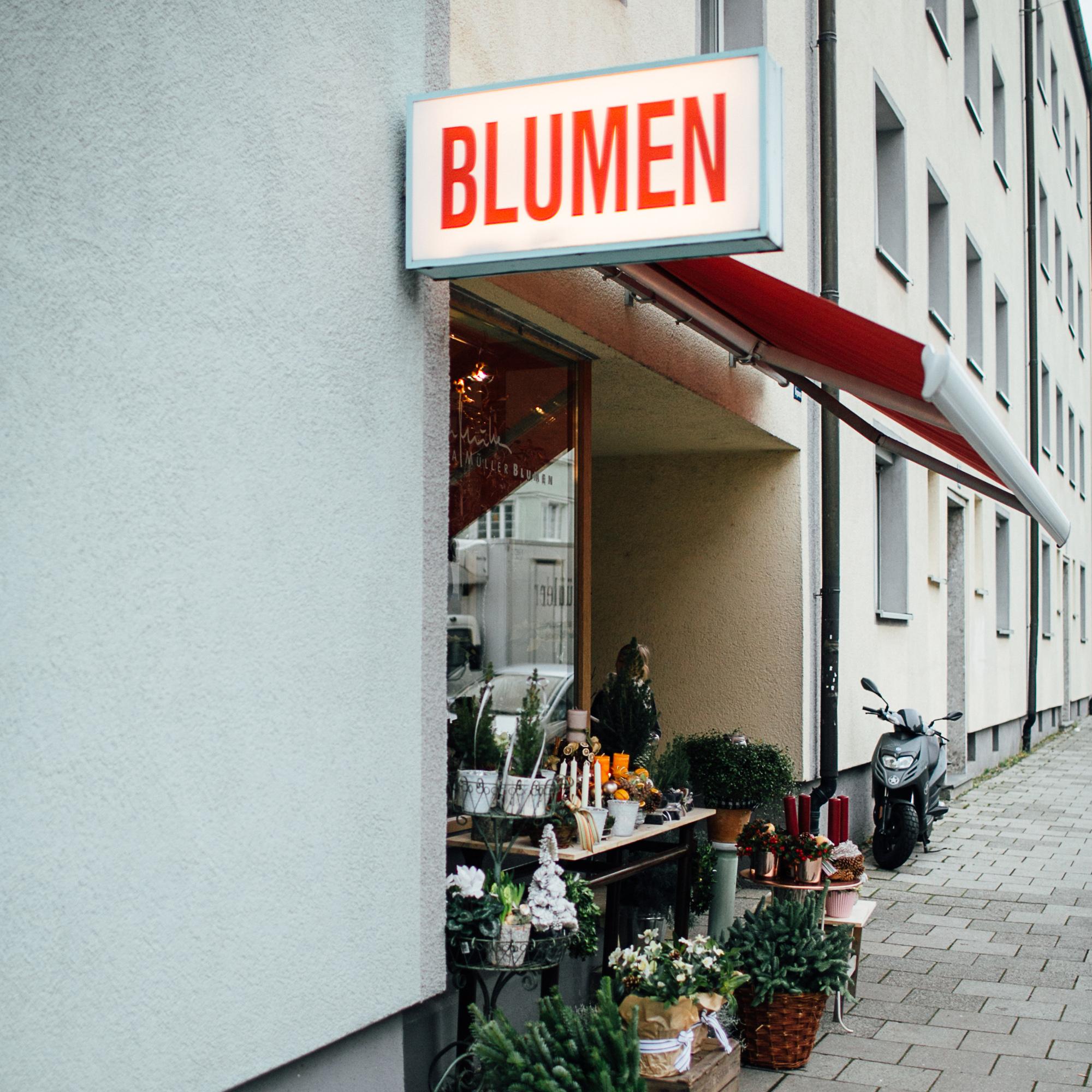 petramuellerblumen-bergmannstrasse.jpg