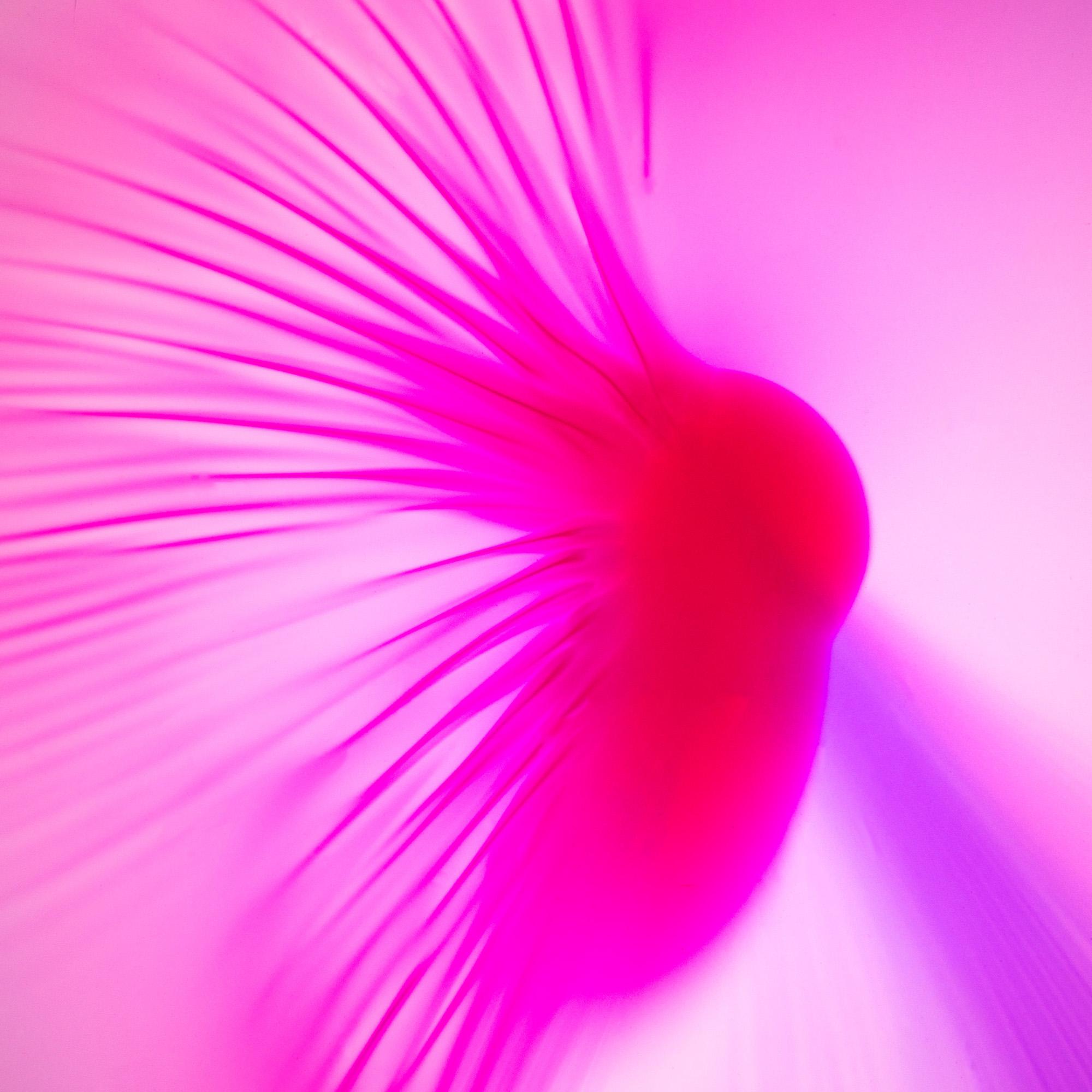 Pink Sky -