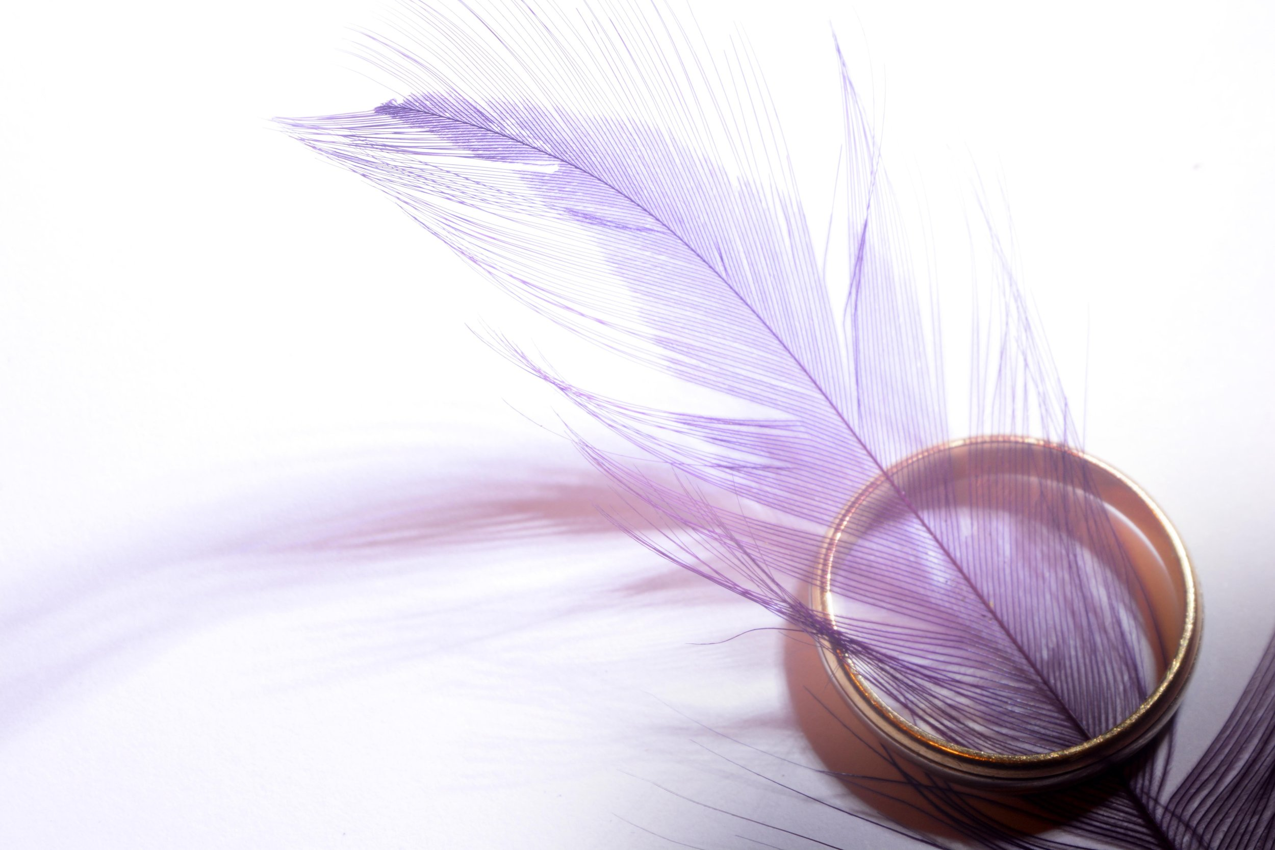 decor-feather-ring-9798.jpg
