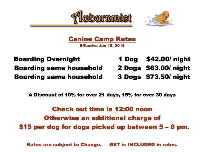 Canine Camp Rates.png