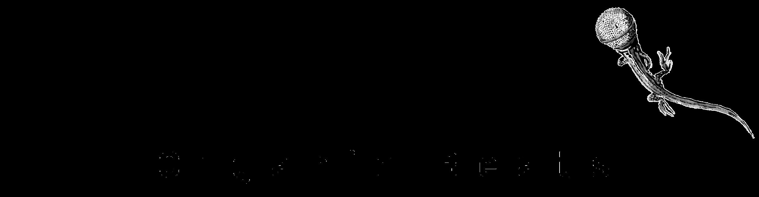 Aerodice_Logo_Arrangiert-01.png