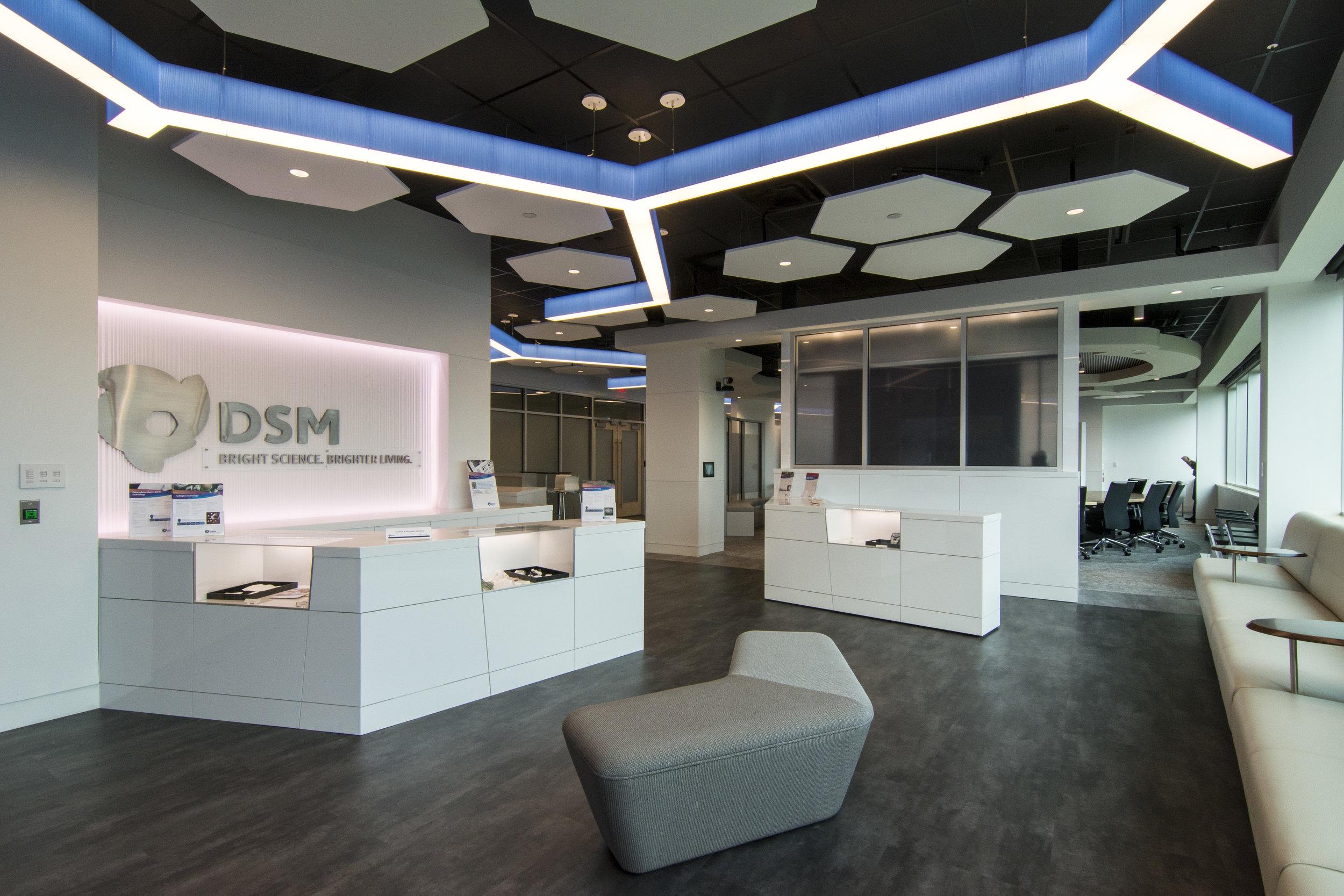 DSM Innovation Center