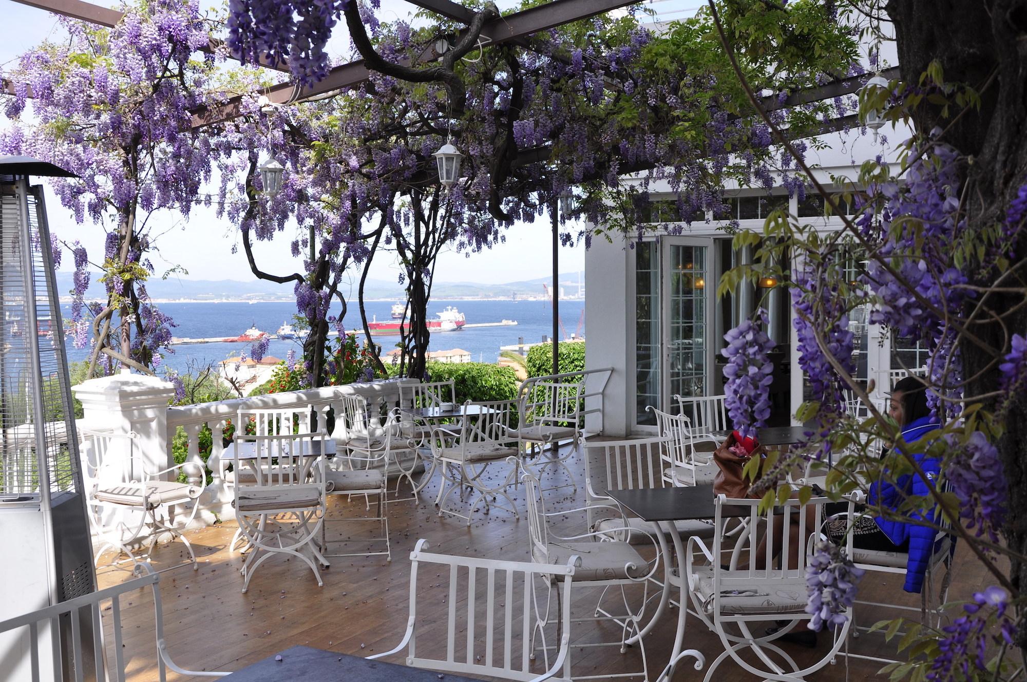 Wisteria Terrace, Rock Hotel, Gibraltar