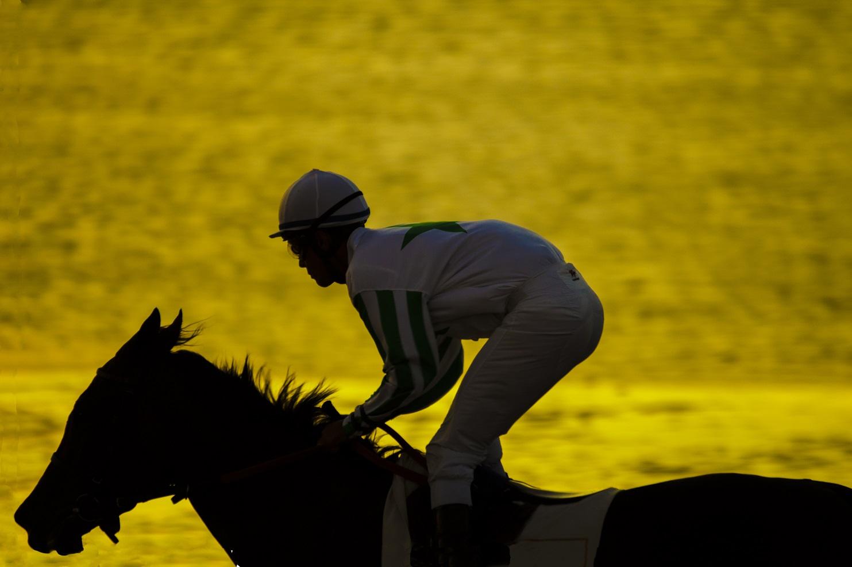 BEACH HORSE RACES