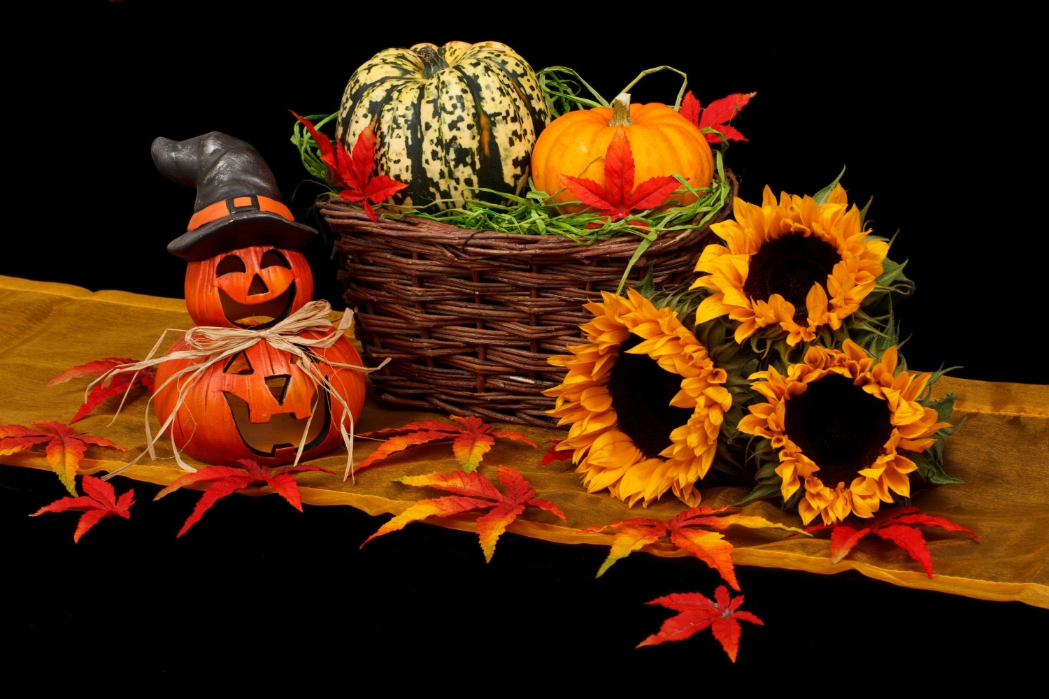 Halloween pumpkins are among the autumnal cornucopia - although they may be in disguise!