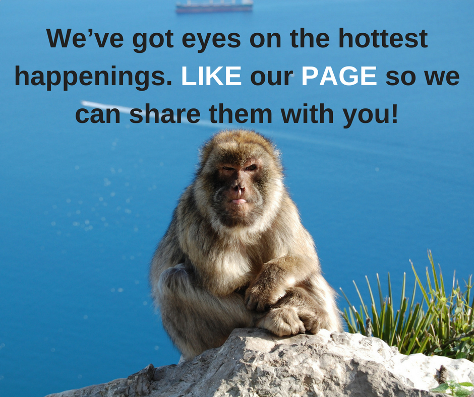 Follow the Monkey … - if you'd like to stay updated on posts like this in your Facebook feed