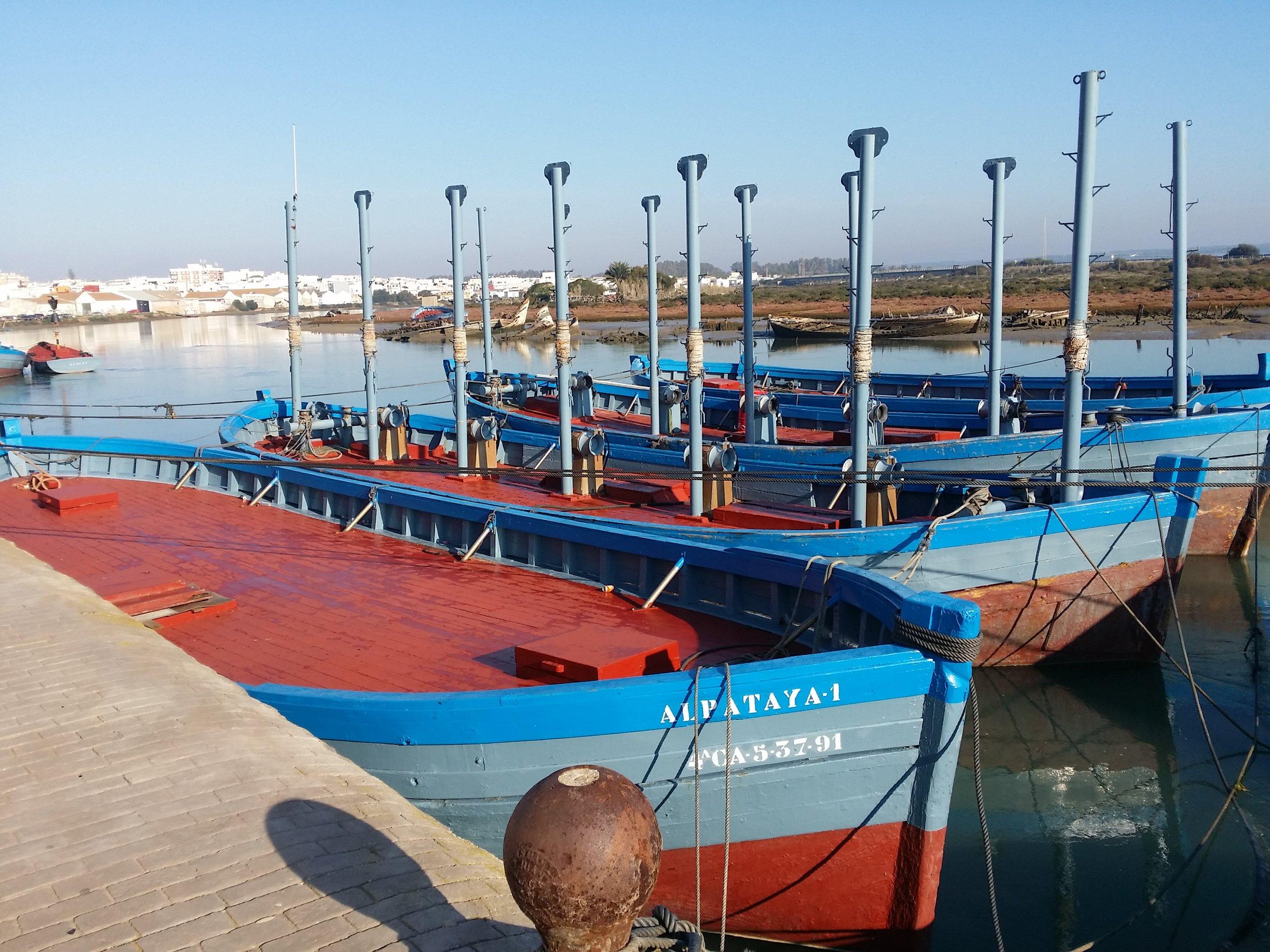 Almadraba tuna boats in Barbate port