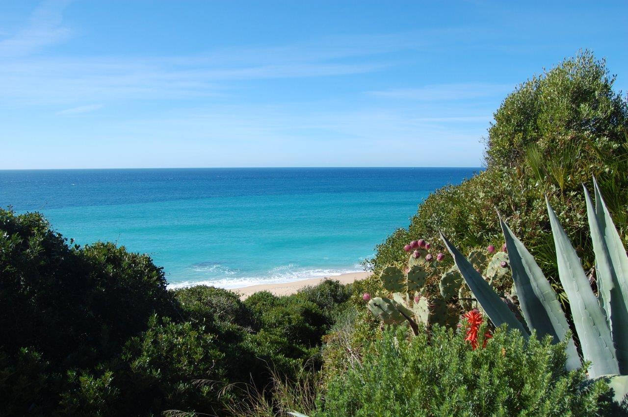 atlanterra-beach-zahara-de-los-atunes