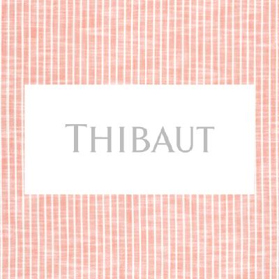 Thibaut Fabric at Porter Design Company