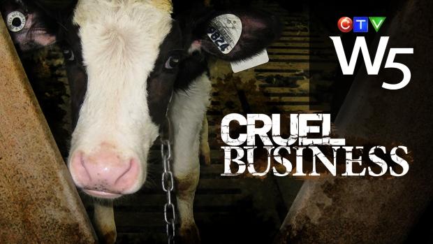 "W5's ""Cruel Business"" - Parts I and II"