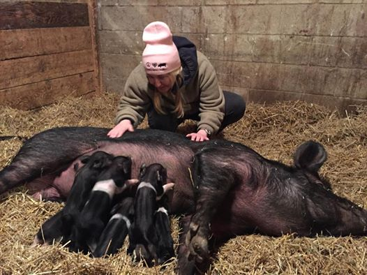 April with her baby piggies!