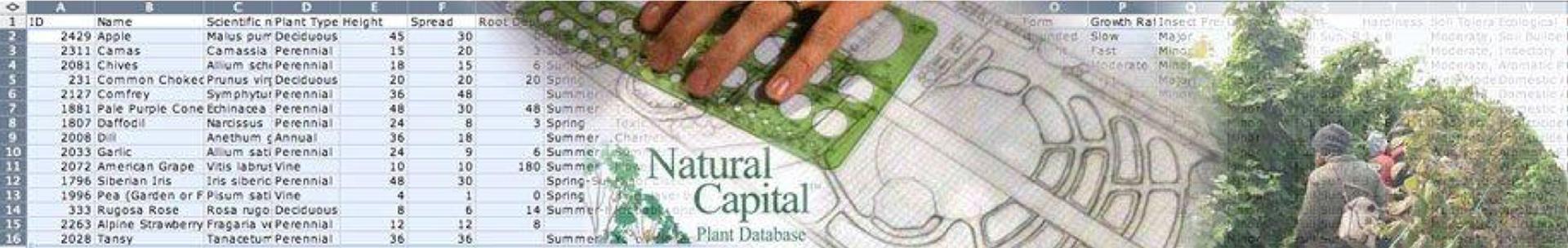 naturalcapital.png