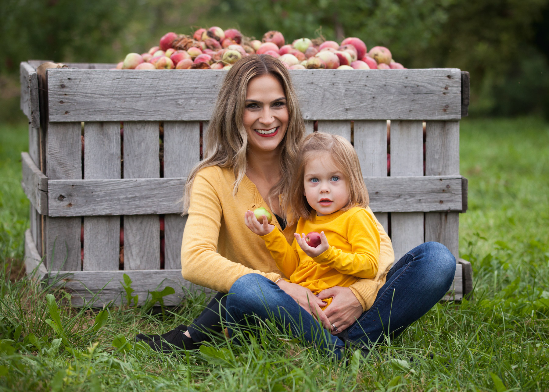 2 year old daughter wearing yellow dress sits on her mom's lap in front of a giant crate of apples at at Park Hill Orchard.