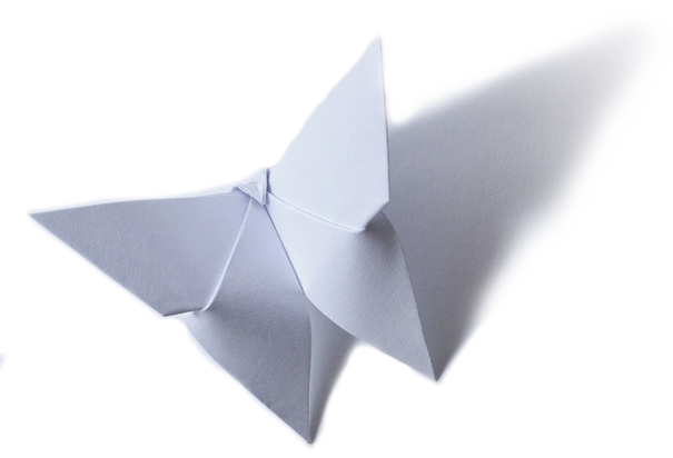 paper-butterfly-trans-4.png