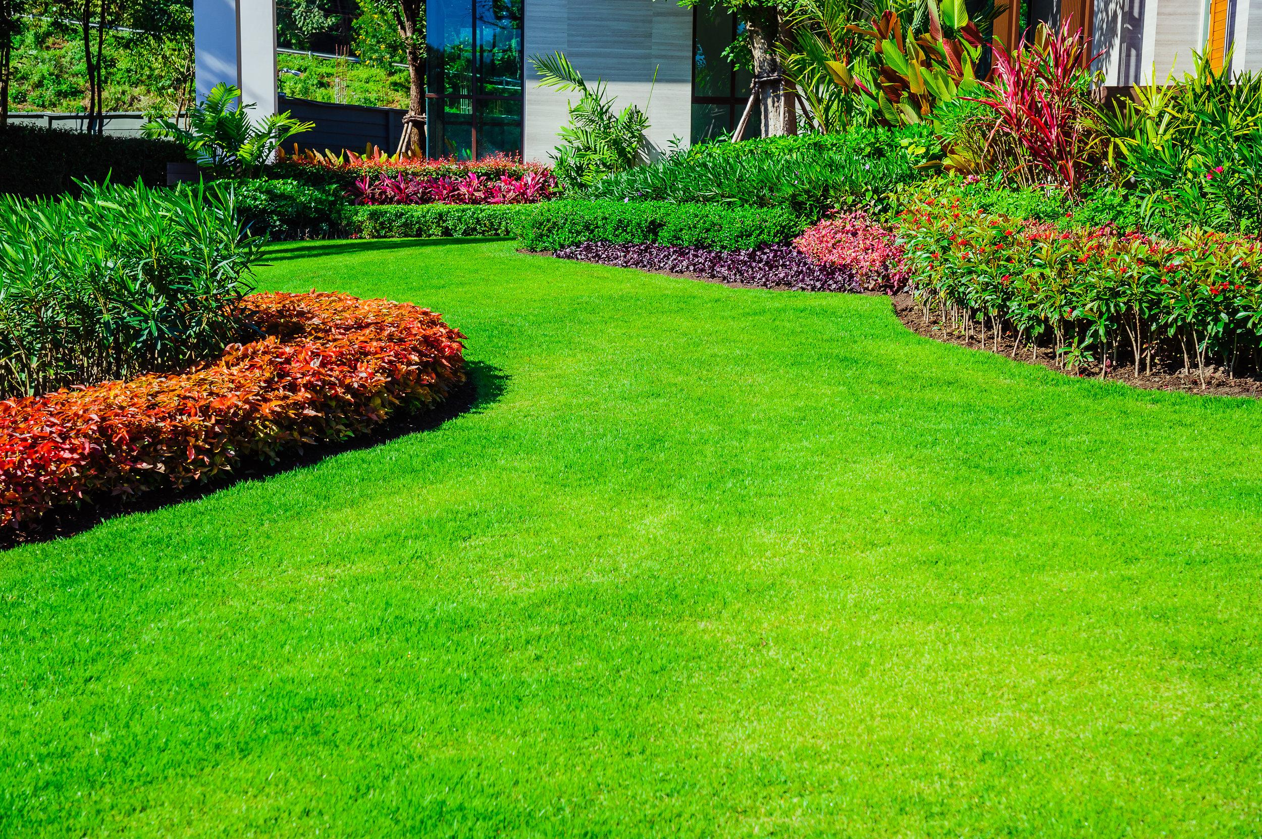 property maintenance -