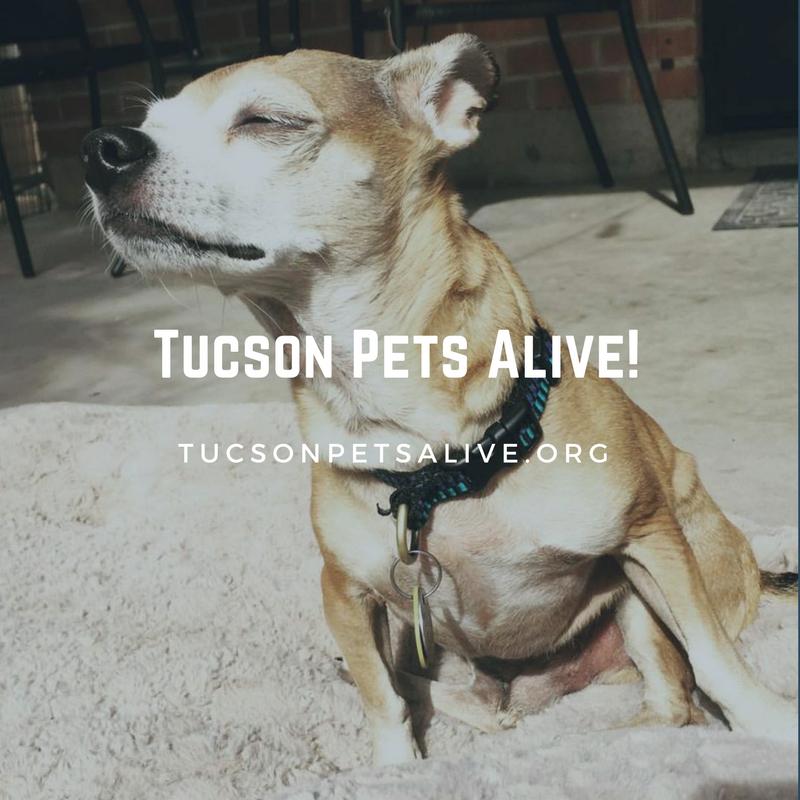 Tucson Pets Alive!.png