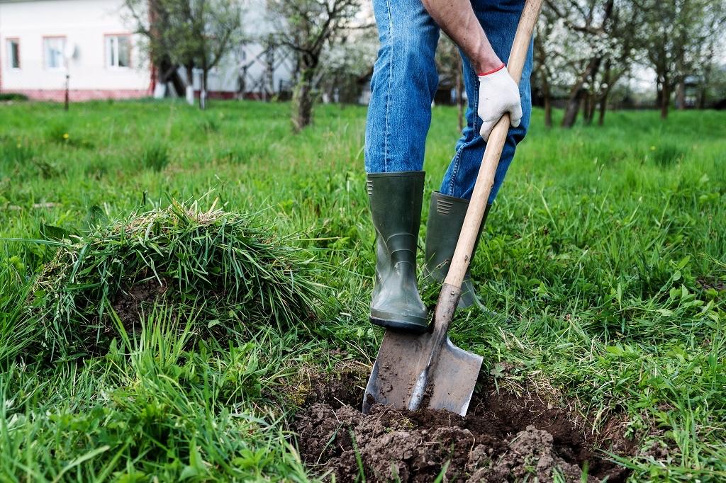 shovel-under-foot.jpg