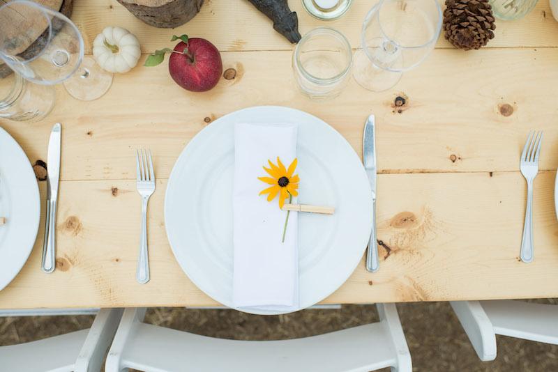 Farm Wedding Rentals Vancouver.jpg