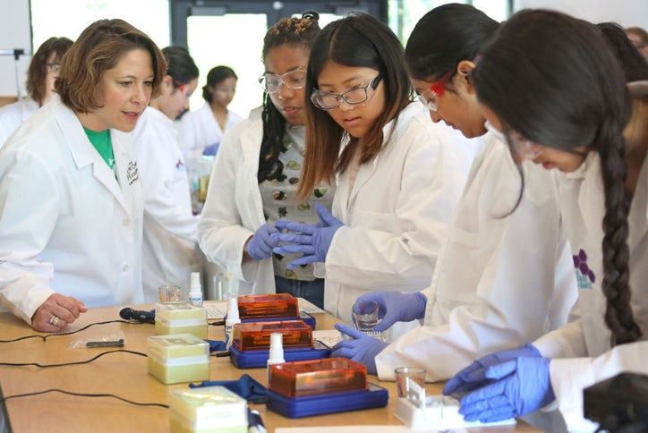 Dallas camp, new Girl Scout badges cover science, from STEM to stern.jpg