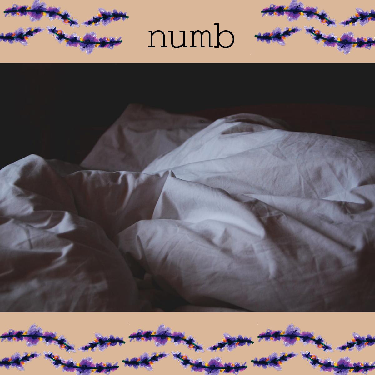 Rachael-Davies-Numb.png
